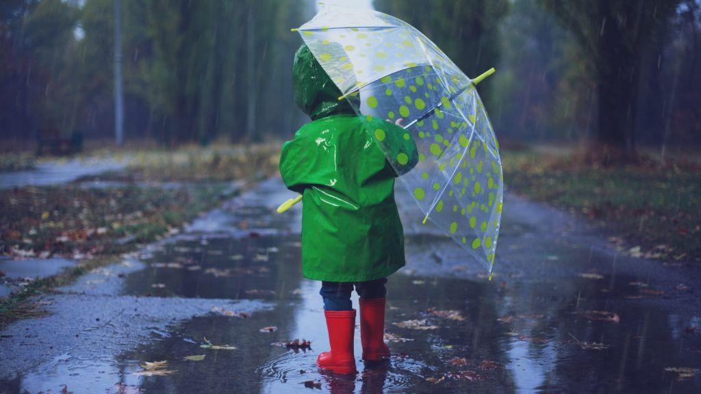 Погода в эти выходные сильно разочарует жителей Тверской области