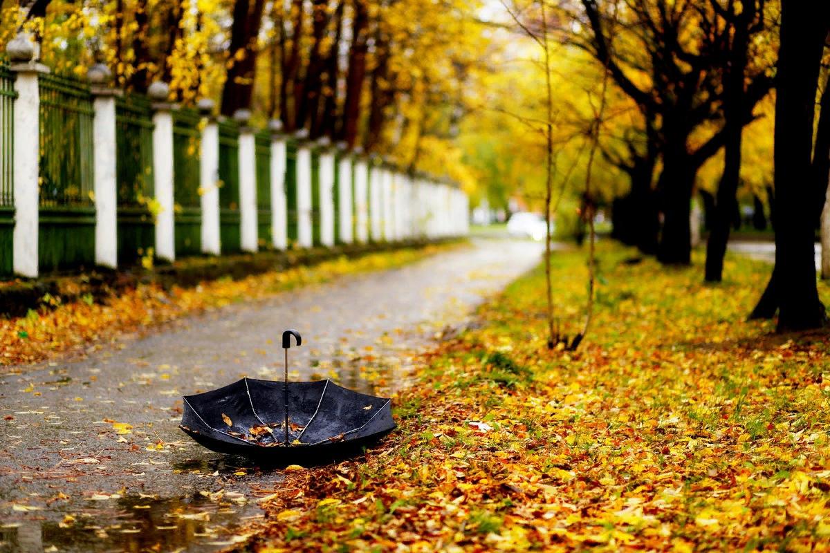 Тверскую область ждёт самый холодный сентябрь XXI века
