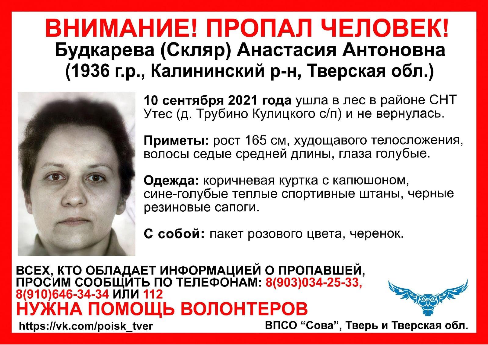 В Тверской области разыскивают пенсионерку, которая ушла в лес и не вернулась