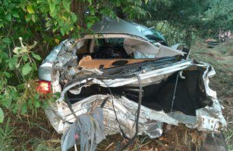 В Тверской области водитель «Лексуса» врезался в дерево и погиб