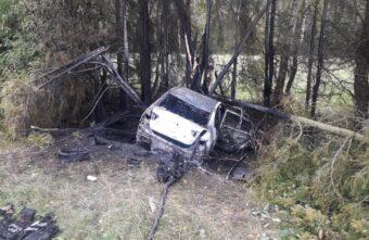 В Тверской области иномарка съехала с дороги и загорелась
