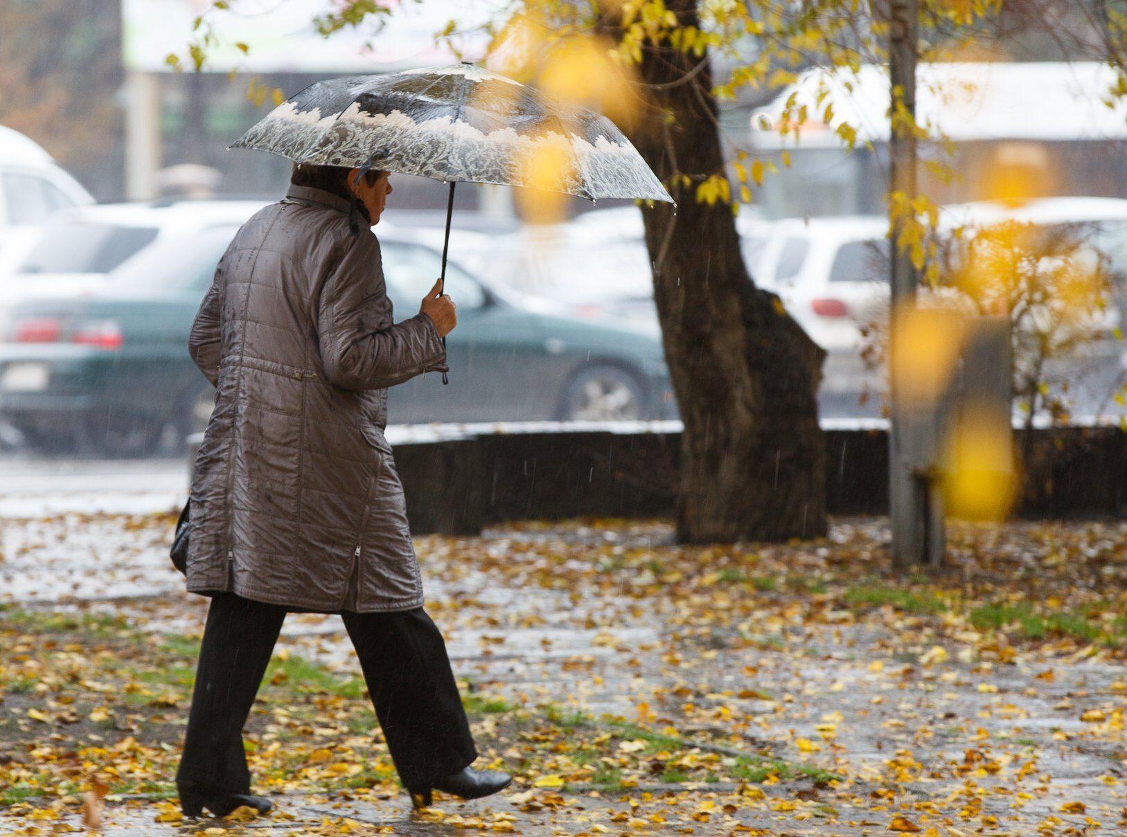 Тверскую область ждёт потепление: прогноз на неделю